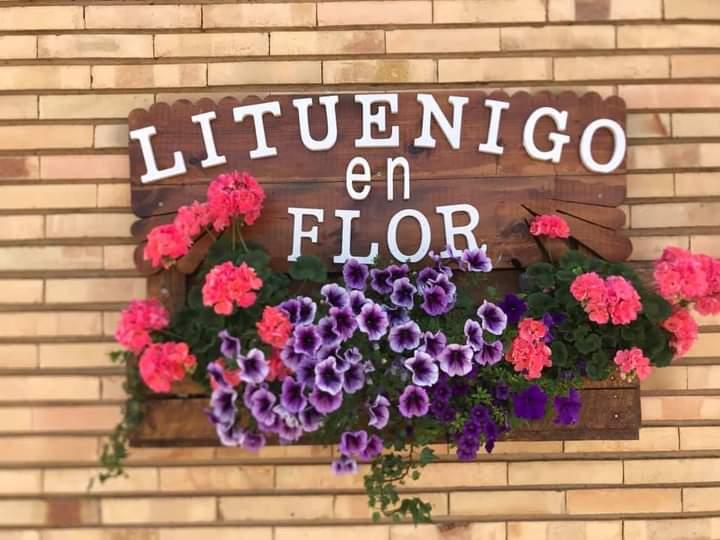 (Español) Lituénigo